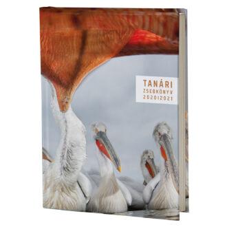 Eminens tanári zsebkönyv 2020/21 - pelikán