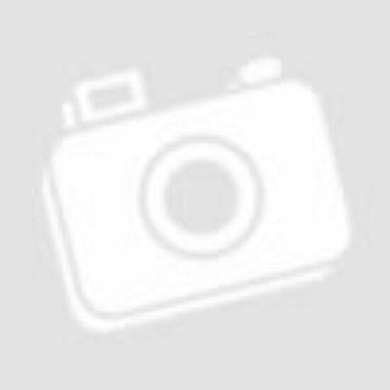 B/5 kombinált napló Labellino borítóval - kék
