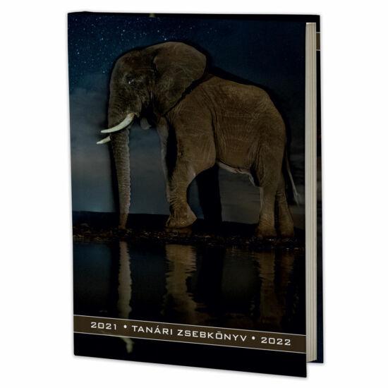 Eminens tanári zsebkönyv 2021/22 - elefánt (fotó: Máté Bence)